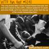 robert kennedys photographs wtf fun facts