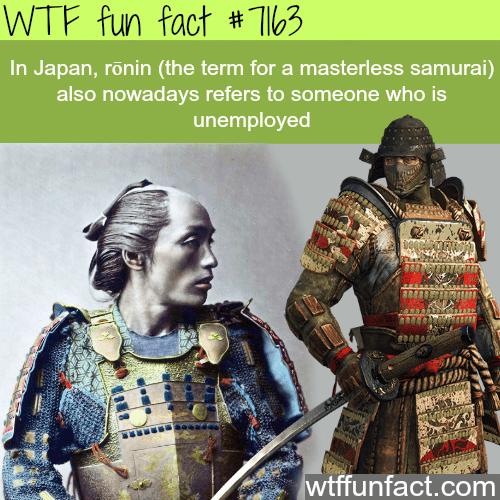 Ronin - WTF Fun Fact