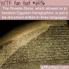 rosetta stone wtf fun facts