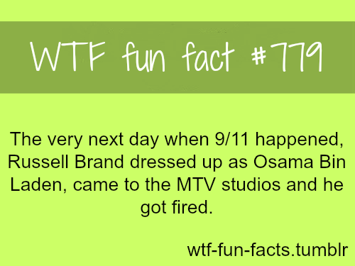 MORE OF WTF-FUN-FACTS are coming HERE