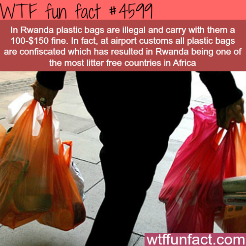 Rwanda becomes the least litter free country in Africa -   WTF fun facts