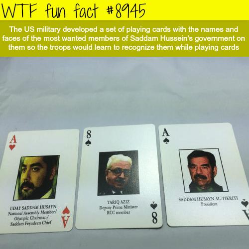 Saddam Hussein's playing cards - WTF fun fact