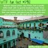 san pedro prison wtf fun facts