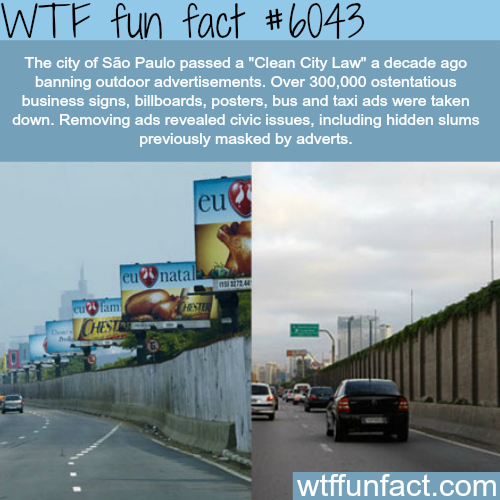 Sao Paolo's Clean City Law- WTF fun facts