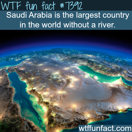 Saudi Arabia facts - WTF fun facts