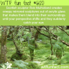 sculptures by rob mulholland wtf fun facts