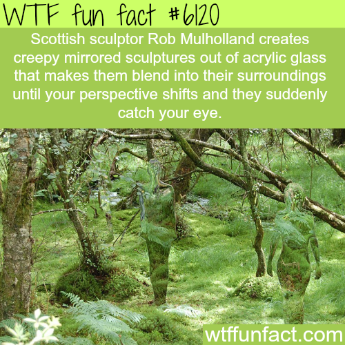 Sculptures by Rob Mulholland - WTF fun facts