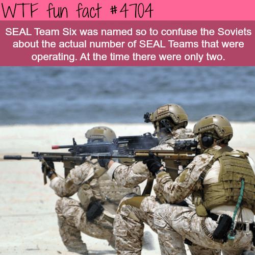 SEAL Team Six - WTF fun facts