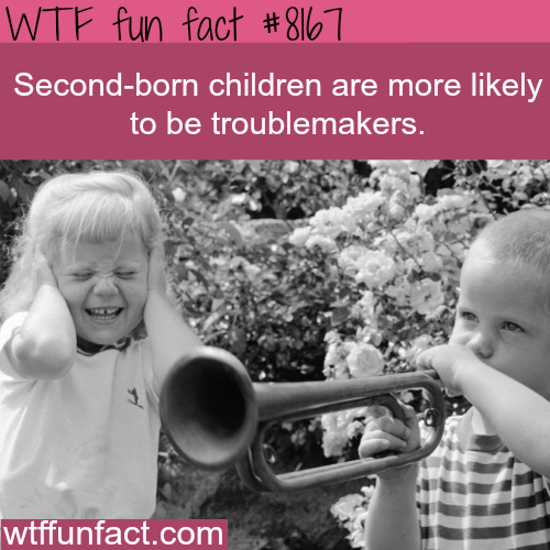 Second-born children - WTF fun fact