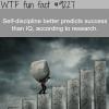 self discipline wtf fun fact
