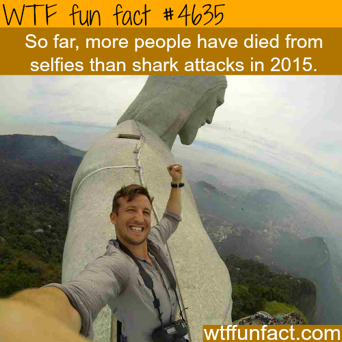 Selfies are more dangerous than sharks - WTF fun facts