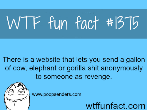 Send poop. THE BEST REVENGE IDEAS.