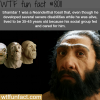 shanidar 1 wtf fun fact