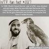 sheikh zayed the man behind dubai success