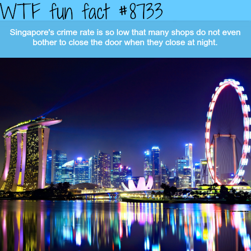 Singapore's crime rate - WTF fun facts