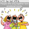 singing together wtf fun facts