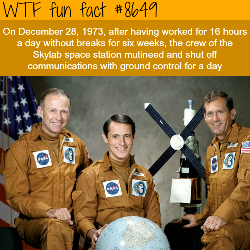 Skylabspace station - WTF fun facts