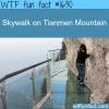 skywalk on tianmen mountain