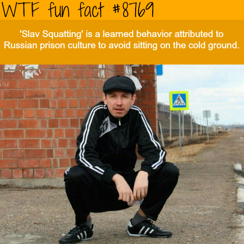 Slav Squatting - WTF fun facts