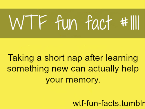 (SOURCE)– taking a nap after work