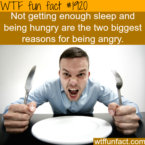 sleepy and hungry - WTF fun facts