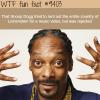 snoop dogg wtf fun facts