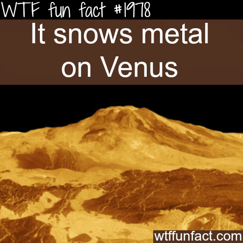 Snowing metal on Venus - WTF fun facts