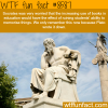 socrates wtf fun facts