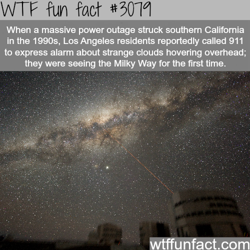 Some facts about Los Angeles -  WTF fun facts