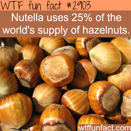 Some Nutella facts -WTF fun facts