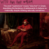 sophomore meaning wtf fun facts