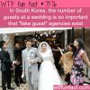 south korean weddings wtf fun facts