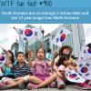 south koreans vs north koreans wtf fun fact