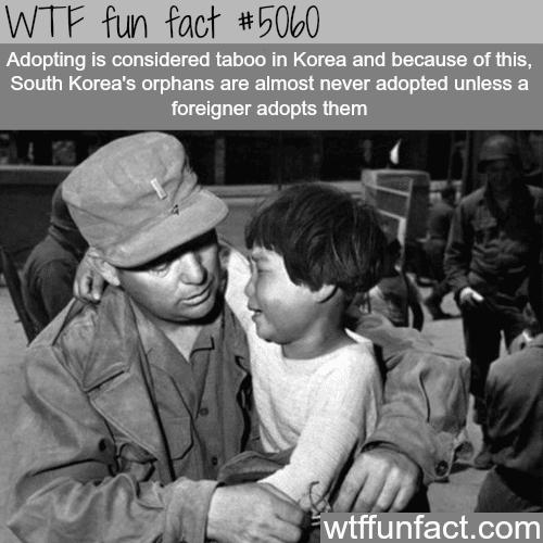 South Korea's orphans - WTF fun facts