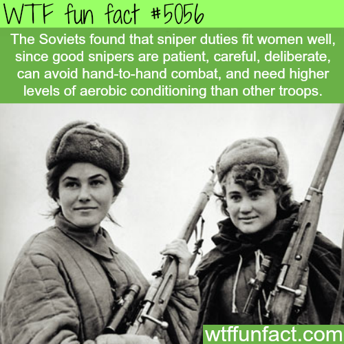 Soviet women snipers - WTF fun facts
