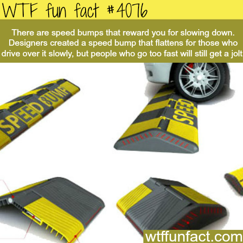 Speed bumps that reward slow drivers - WTF fun facts