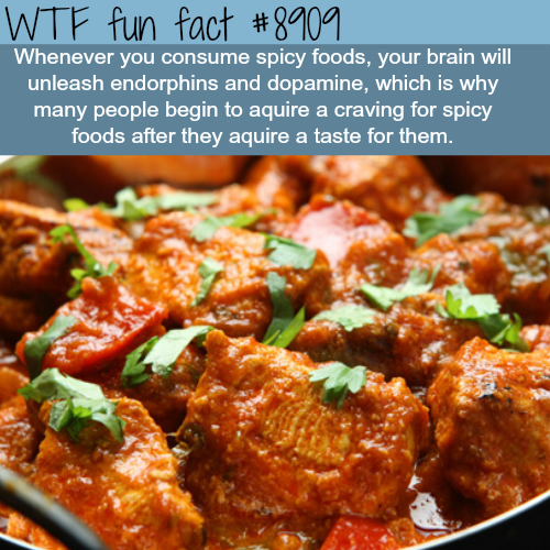 Spicy Foods - WTF fun facts