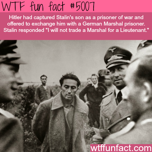 Stalin's son - WTF fun facts