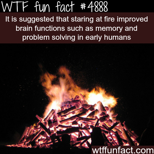 Staring at fire can help your problem solving skills? -