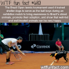 street dogs serve as ball boys during a tennis