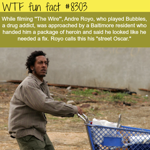 Street Oscar - WTF fun facts