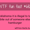 stupid laws