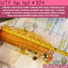 subways footlong wtf fun facts