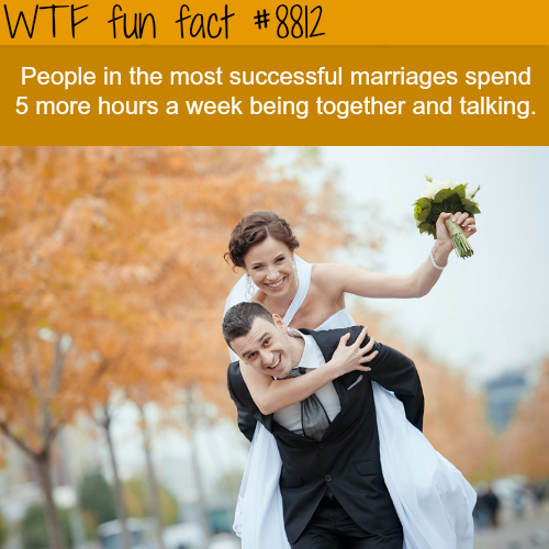 Successful Marriages - WTF fun facts