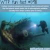 sunken ships wtf fun facts