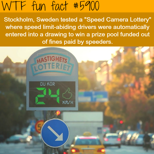 Sweden Camera Lottery - WTF fun facts