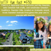 sweden hills japan wtf fun facts