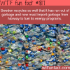 sweden is the best recycling country