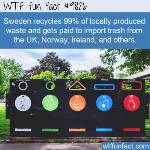 Sweden recycles 99% of locally produced waste and gets paid to import trash from the UK