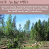 sweden wtf fun facts